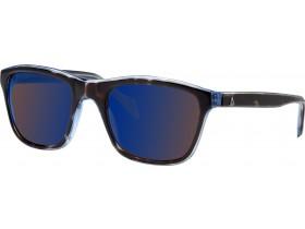 Gaastra Boom tortoise blue acz 145F