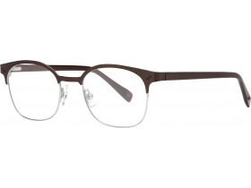 Cerruti 6084 brown/crystal brown 49-19  145F